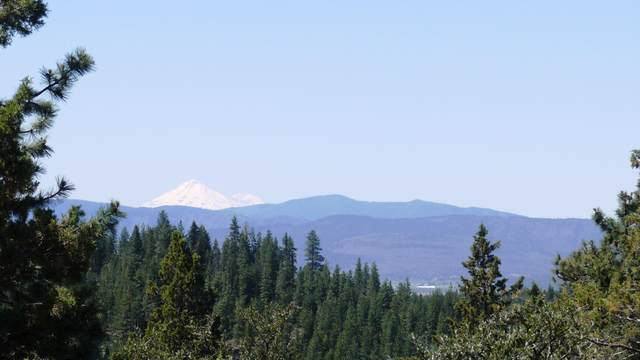 Beaver Ln Lot 44, Bonanza, OR 97623 (MLS #220114681) :: Premiere Property Group, LLC