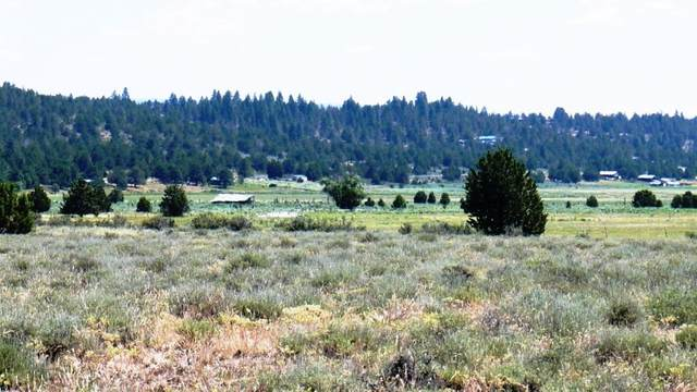 8th St Sprague River Lot 16, Sprague River, OR 97639 (MLS #220114709) :: The Payson Group