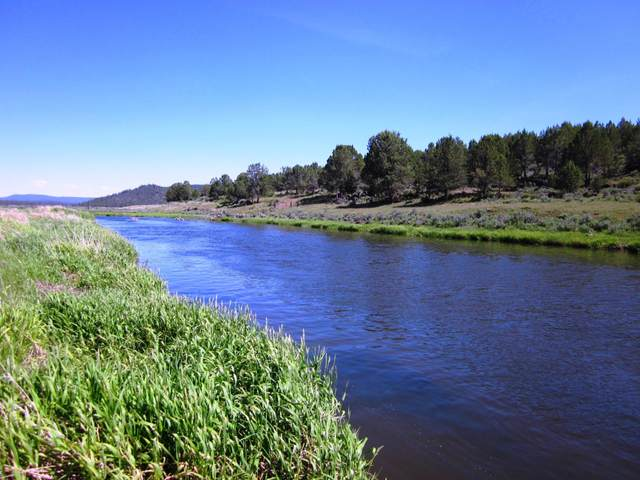 5 Jackson Street, Sprague River, OR 97639 (MLS #220114793) :: The Payson Group
