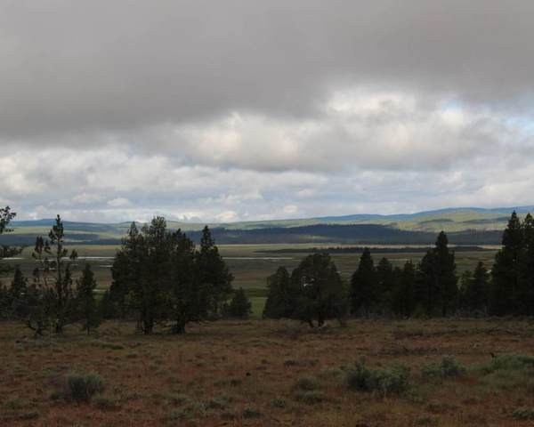 Sycan Marsh 640 Road, Silver Lake, OR 97638 (MLS #220114830) :: The Payson Group