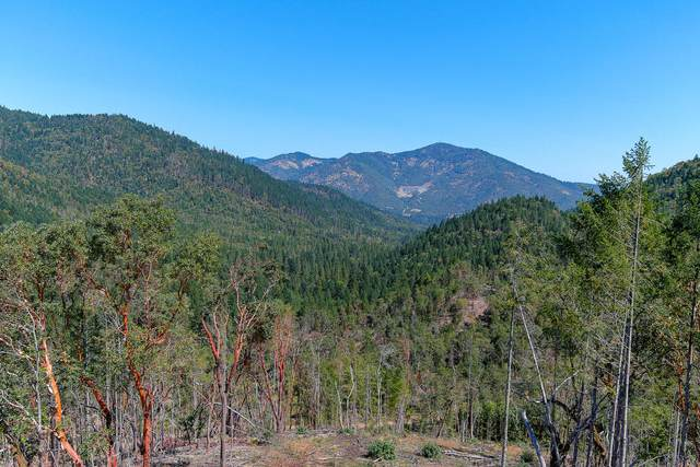 Savage Creek Road, Rogue River, OR 97537 (MLS #220114935) :: Rutledge Property Group