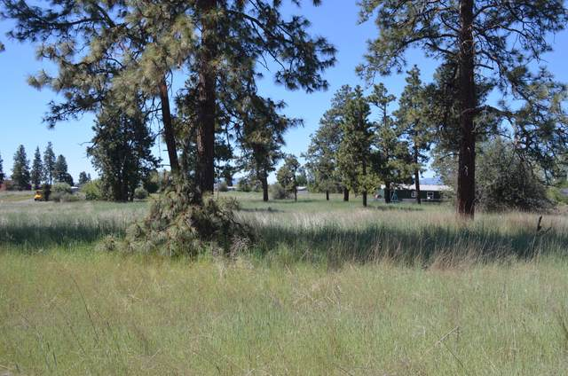 1700 Meadow View Drive, Chiloquin, OR 97624 (MLS #220114961) :: Bend Relo at Fred Real Estate Group