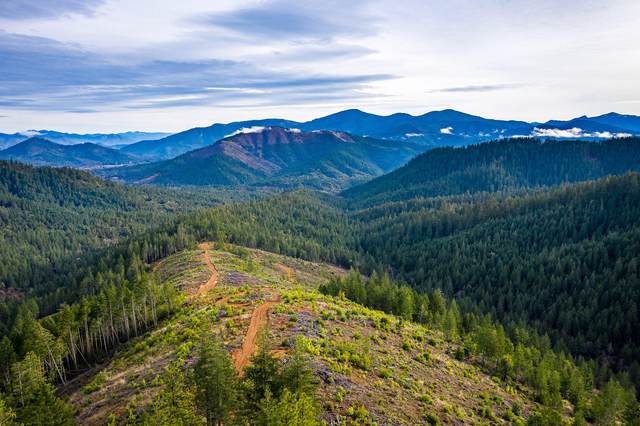 South Fork Round Prairie Creek, Wilderville, OR 97543 (MLS #220115004) :: The Payson Group
