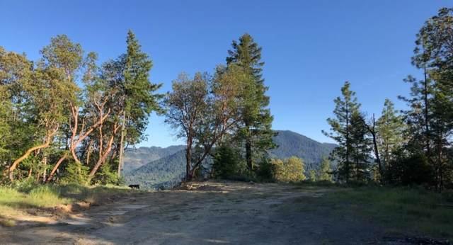 250 Leland Road, Wolf Creek, OR 97497 (MLS #220115815) :: Vianet Realty