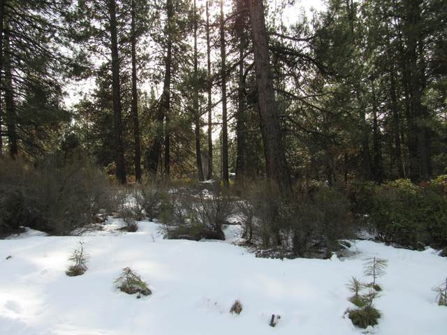 Friendship Drive, Chiloquin, OR 97624 (MLS #220116260) :: The Ladd Group