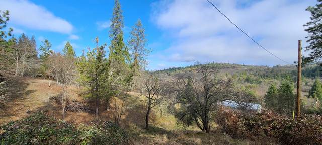 600 Daisy Creek Road, Jacksonville, OR 97530 (MLS #220116322) :: Rutledge Property Group
