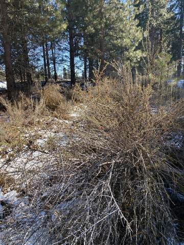 Lake Forest  Lot 33 Place, Chiloquin, OR 97624 (MLS #220116462) :: The Ladd Group