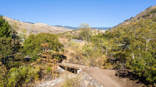 2918 Dead Indian Memorial Road, Ashland, OR 97520 (MLS #220116889) :: Coldwell Banker Sun Country Realty, Inc.