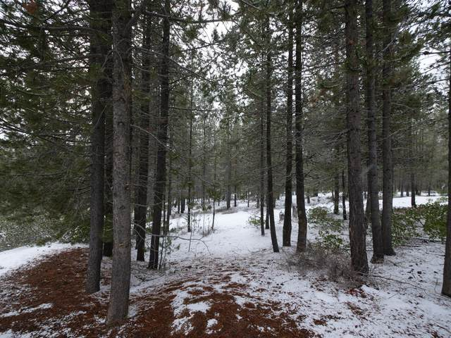 Pine Creek Loop, Crescent Lake, OR 97733 (MLS #220116926) :: Berkshire Hathaway HomeServices Northwest Real Estate