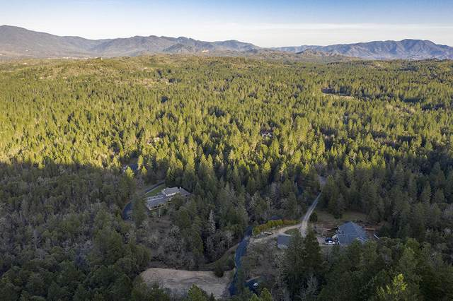 572 Brookstone Hills Drive, Grants Pass, OR 97526 (MLS #220117307) :: Team Birtola | High Desert Realty