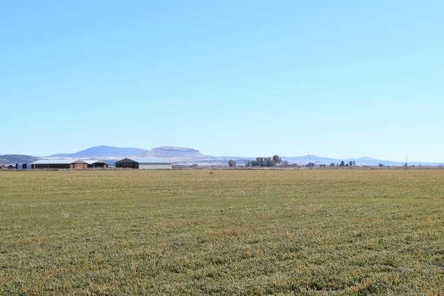 0 County Road 107A, Tulelake, CA 96134 (MLS #220117423) :: The Riley Group