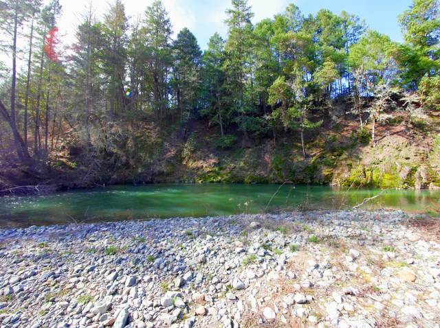 3885 Lower Grave Creek Road, Wolf Creek, OR 97497 (MLS #220117474) :: The Ladd Group