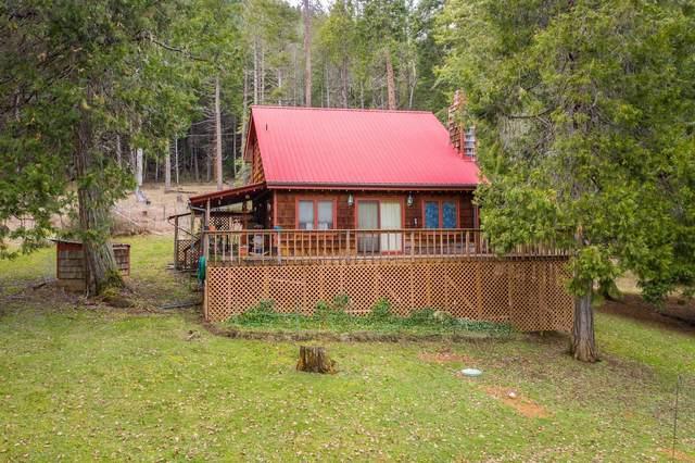599 Warner Road, Wolf Creek, OR 97497 (MLS #220117482) :: Central Oregon Home Pros