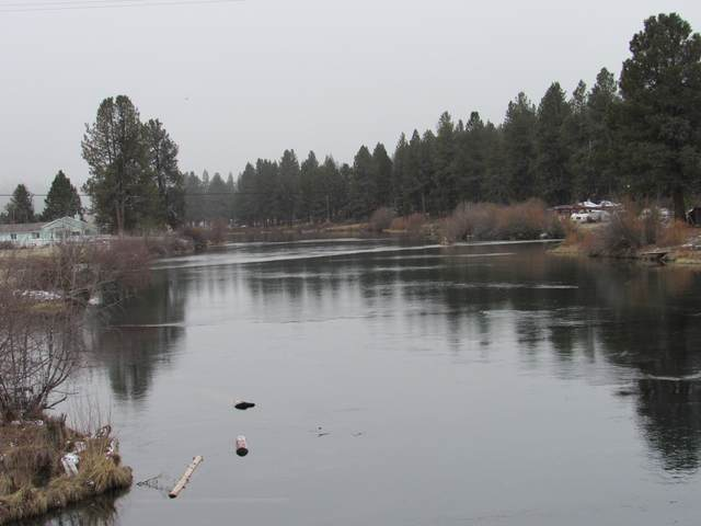 40610 Riverview Drive, Chiloquin, OR 97624 (MLS #220118402) :: Bend Homes Now