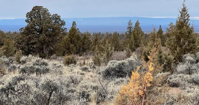 0 SE Palm Lane, Prineville, OR 97754 (MLS #220118643) :: Team Birtola | High Desert Realty