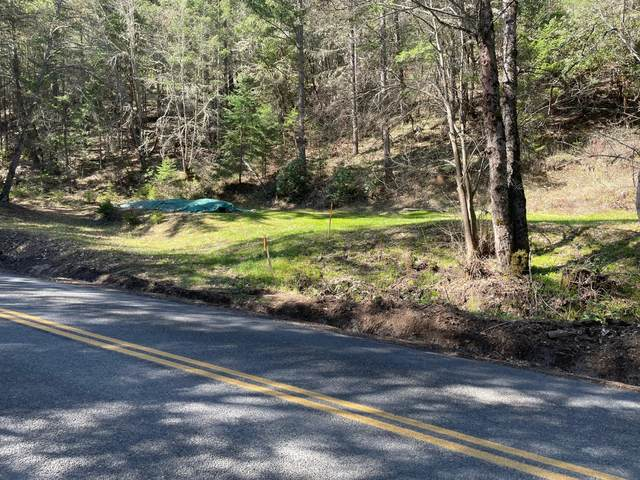 Thompson Creek Rd, Applegate, OR 97530 (MLS #220118901) :: FORD REAL ESTATE