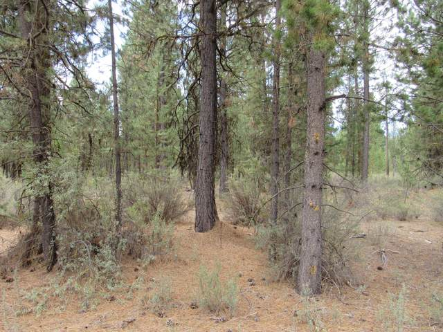 B 7 lot 10-1107 Cave Drive, Chiloquin, OR 97624 (MLS #220119220) :: Stellar Realty Northwest