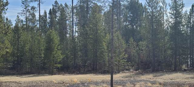 800 Hwy 97, Crescent, OR 97733 (MLS #220119534) :: Premiere Property Group, LLC