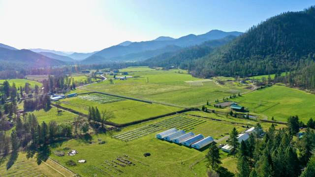 15274,1578 8 Hwy 238, Grants Pass, OR 97527 (MLS #220119831) :: Schaake Capital Group