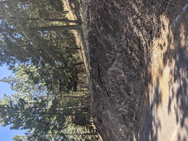 Ponderosa Dr Block 5 Lot 12, Klamath Falls, OR 97601 (MLS #220120144) :: Vianet Realty