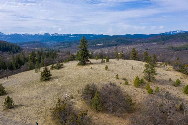 Colestin Road, Ashland, OR 97520 (MLS #220120160) :: Bend Relo at Fred Real Estate Group