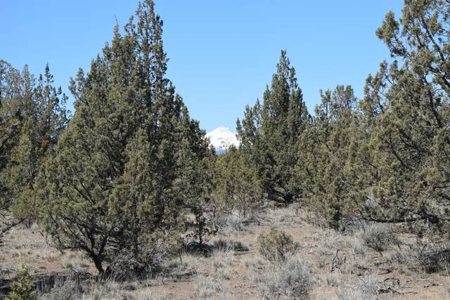 Mustang Road, Terrebonne, OR 97760 (MLS #220120217) :: Bend Relo at Fred Real Estate Group
