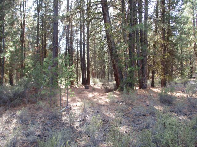 Bl 7 lt 11 Cave Drive Tract 1107, Chiloquin, OR 97624 (MLS #220120254) :: Premiere Property Group, LLC