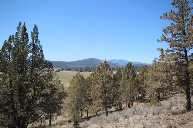 Parula Road Lot 1149, Klamath Falls, OR 97601 (MLS #220120296) :: Team Birtola | High Desert Realty