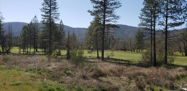 1392 Golf Club Drive, Cave Junction, OR 97523 (MLS #220120506) :: Vianet Realty