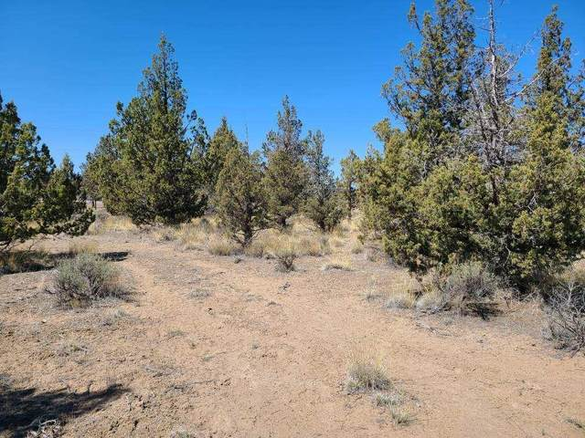 1617 SE Yuma, Prineville, OR 97754 (MLS #220120711) :: Vianet Realty