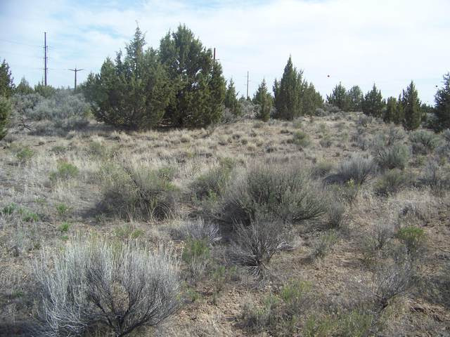 SW Cessna Drive, Prineville, OR 97754 (MLS #220120756) :: Central Oregon Home Pros
