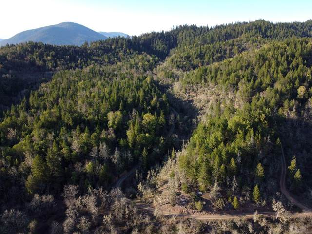 0 Holton Creek Road, Cave Junction, OR 97523 (MLS #220120758) :: Top Agents Real Estate Company