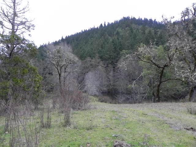 900 Boomer Hill Road 200/240, Myrtle Creek, OR 97457 (MLS #220120783) :: Premiere Property Group, LLC
