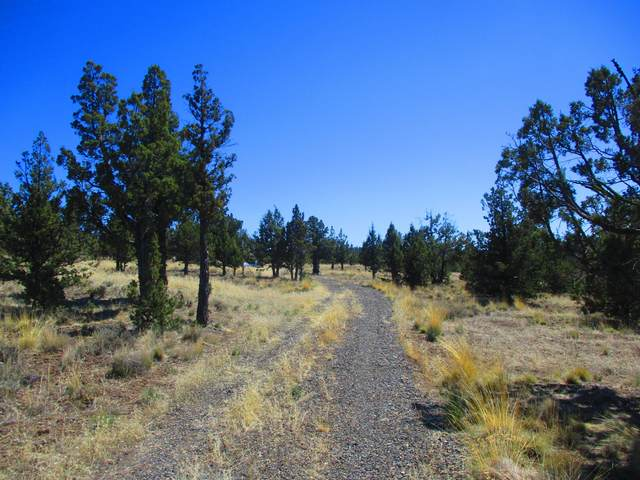 TL2400 SE Beretta Way, Prineville, OR 97754 (MLS #220120822) :: Team Birtola | High Desert Realty