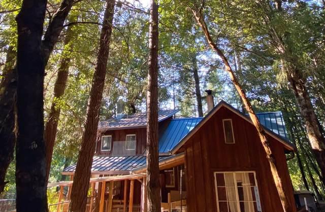 1259 Waldo Road, O'Brien, OR 97534 (MLS #220120876) :: Elite Oregon Homes