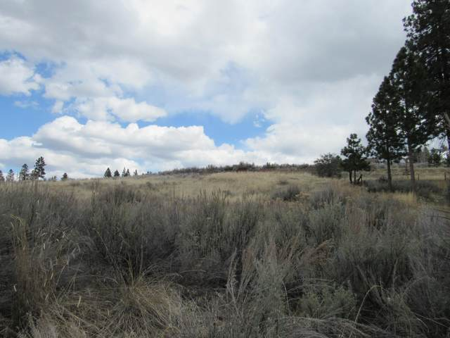 Lot 1 Elida Court, Chiloquin, OR 97624 (MLS #220120980) :: Stellar Realty Northwest