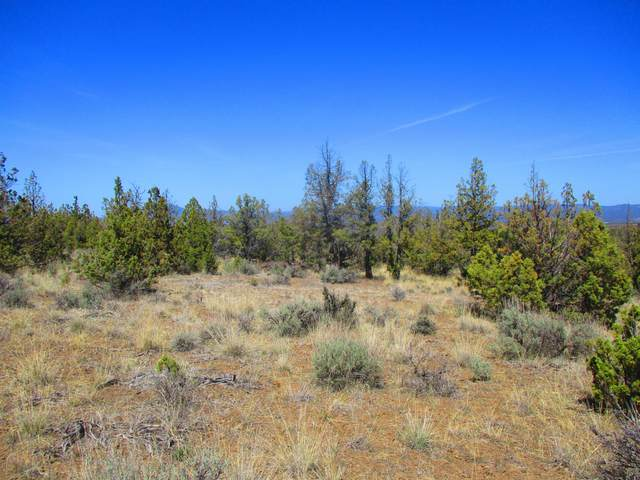 TL1100 SE Juniper Canyon Road, Prineville, OR 97754 (MLS #220120983) :: Vianet Realty