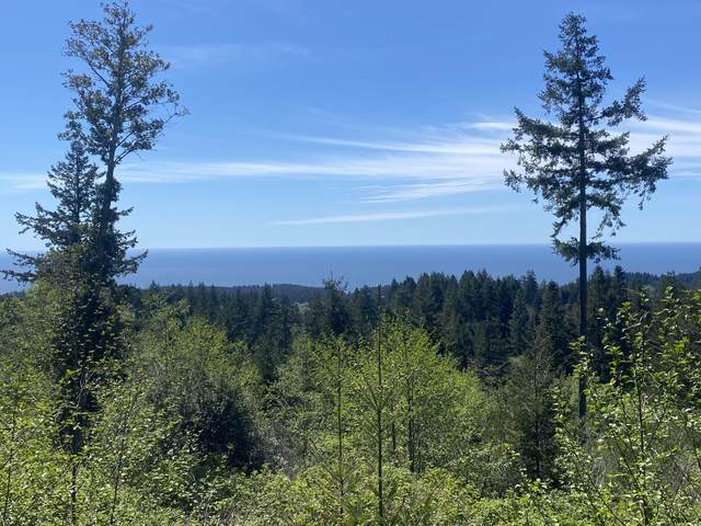 0 Rhody Drive, Brookings, OR 97415 (MLS #220121499) :: The Ladd Group