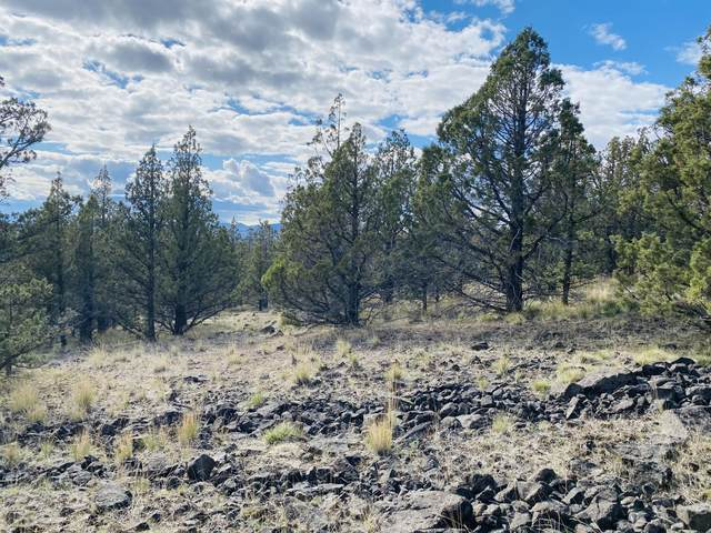 TL900 SE Walther, Prineville, OR 97754 (MLS #220121829) :: Team Birtola | High Desert Realty