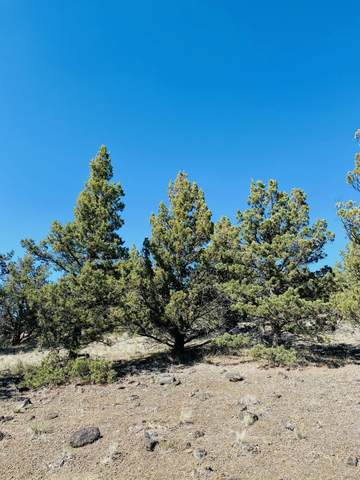 TL1000 SE Walther, Prineville, OR 97754 (MLS #220121830) :: Bend Relo at Fred Real Estate Group