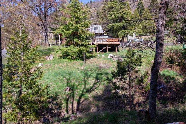 3872 Old Hwy 99, Ashland, OR 97520 (MLS #220121857) :: FORD REAL ESTATE