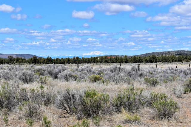 12271 SE Davis Loop, Prineville, OR 97754 (MLS #220121934) :: Bend Relo at Fred Real Estate Group