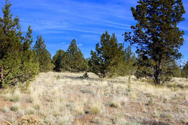 TL 5300 Hilltop Road, Prineville, OR 97754 (MLS #220121966) :: Bend Relo at Fred Real Estate Group