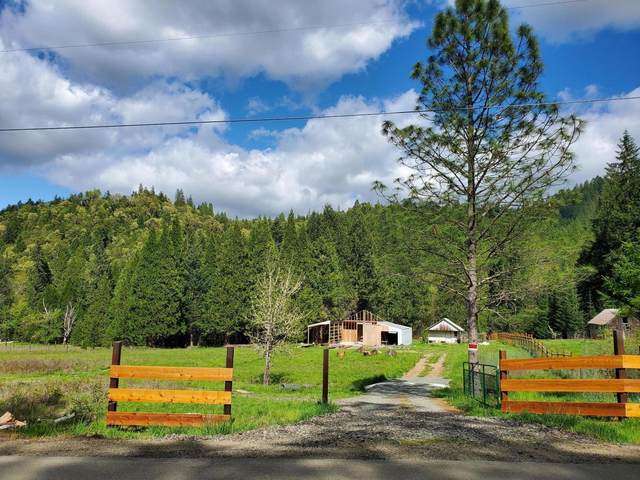 2799 Quines Creek Road, Azalea, OR 97410 (MLS #220122017) :: Bend Relo at Fred Real Estate Group