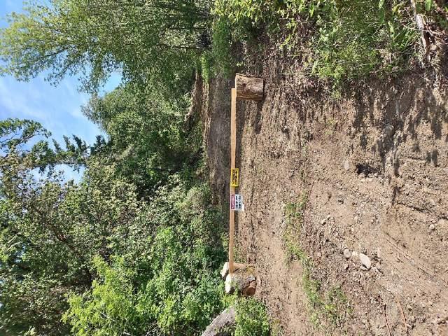 0 Black Oak Drive, Roseburg, OR 97471 (MLS #220122032) :: Bend Relo at Fred Real Estate Group