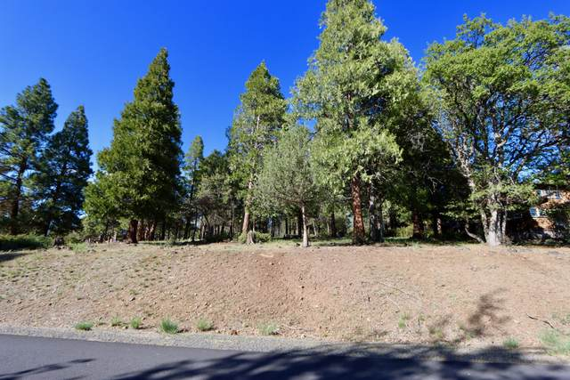 Kestrel Road Lot 218, Klamath Falls, OR 97601 (MLS #220122196) :: Chris Scott, Central Oregon Valley Brokers