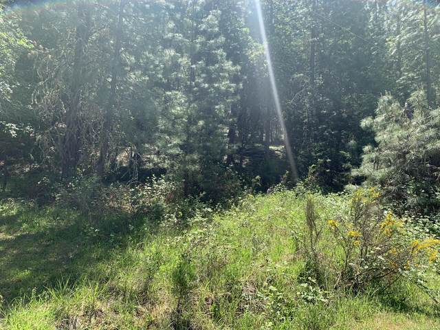 0 Rogue Riffle Drive, Grants Pass, OR 97526 (MLS #220122364) :: FORD REAL ESTATE