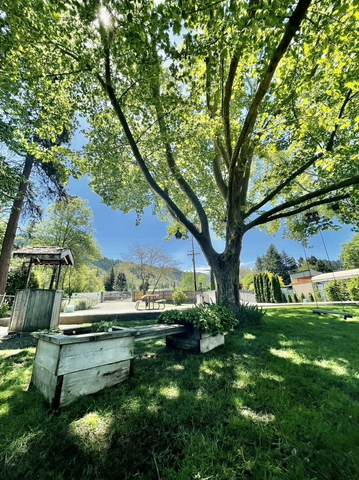 7000 Rogue River Hwy, Grants Pass, OR 97527 (MLS #220122381) :: Top Agents Real Estate Company