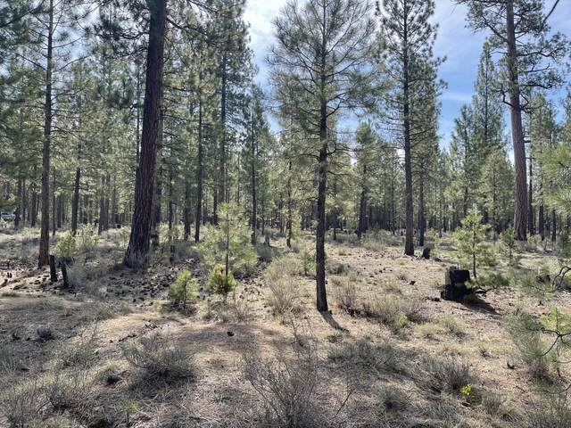 52331 Elderberry Court, La Pine, OR 97739 (MLS #220122397) :: Bend Relo at Fred Real Estate Group