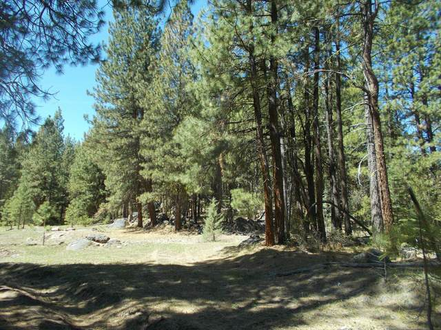 Lot 1700 140 Highway, Bonanza, OR 97623 (MLS #220122456) :: Vianet Realty